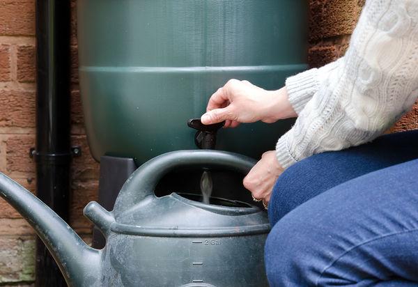 Storing rainwater