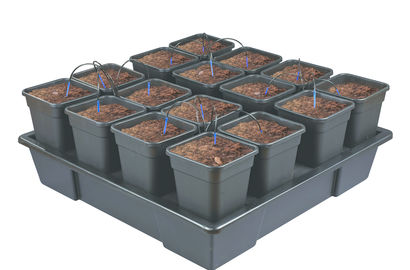 Easy plant growing using the WILMA growing system
