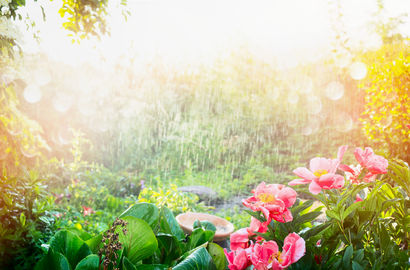 How to garden during wet spells?